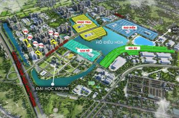 Bán đơn lập Ngọc Trai đảo lớn giá rẻ nhất thị trường dự án Vinhomes Ocean Park.LH 0962825595