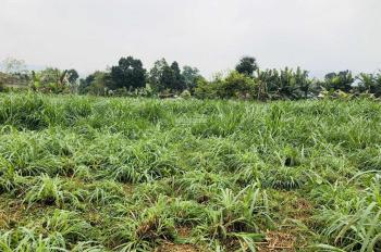 Cần bán đất làm trang trại nhà vườn tại xã Vân Hoà huyện Ba Vì HN. LH A Hoang 0918244657