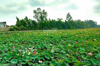 Cần bán gấp lô đất nền mặt hồ sen, ngay cạnh khu công nghệ cao, giá rẻ nhất. LH: 0962415505
