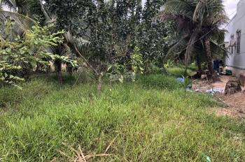 Đất vườn dừa 1087m Tp Bến Tre đường 2m