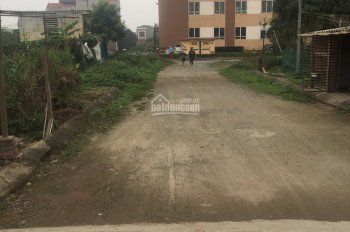 Bán đất liền kề trong khu đô thị Tân Việt, Đức Thượng, Hoài Đức, diện tích 91m2, giá đầu tư