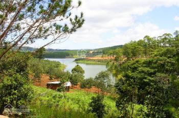 Đất thổ cư hồ Tuyền Lâm - Đà Lạt, sổ sẵn từng nền 500 tr, sang nhượng gấp, chính chủ