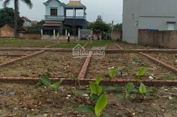 Chính chủ cần bán lô đất đẹp tại tổ 10 - Quang Minh, Mê Linh, Hà Nội