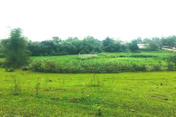 Bán 13000m2 view tuyệt đẹp giá đầu tư tại Lương Sơn Hòa Bình