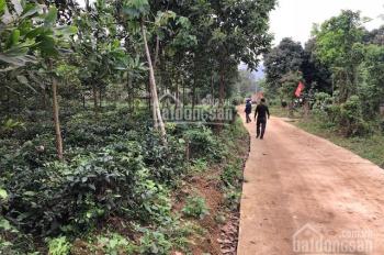 bán 5144m2 đất trang trại nhà vườn tại xã Tân Thành, Lương Sơn, giá 1,2 tỷ.LH: 0988168636.