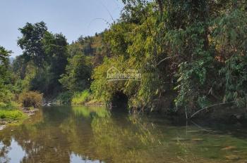 Bán 5.000m2 đất giáp suối Đá To - cách chân đèo Bảo Lộc 8km - rất hợp nghỉ dưỡng