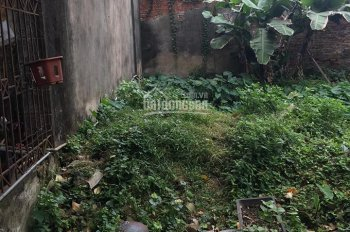 Bán đất Trâu Quỳ, Gia Lâm, diện tích 56.8m2 giá 23tr/m2, LH 0983253436