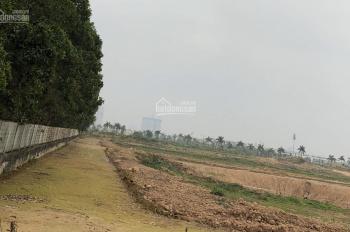 Bán 56m2 đất dịch vụ tại xã An Thượng, Hoài Đức, Hà Nội