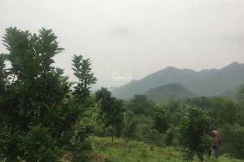 Cần bán đất 2900m2 đã có khuôn viên nhà vườn hoàn thiện, có suối nước chảy quanh năm tại Yên Bình