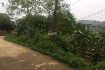 Cần bán lô đất 800m2 đã có khuôn viên nhà vườn view thoáng mát tại Yên Bình, Thạch Thất, Hà Nội
