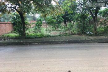 Cần bán lô đất 300m2 khu TĐC Phú Cát, Quốc Oai, Hà Nội, gần Khu CNC Hoà Lạc