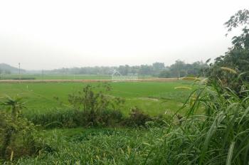 Bán đất ở xóm Mái xã Yên Bài huyện Ba Vì Hà Nội