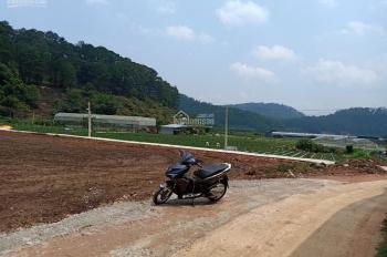 Cần bán lô đất nông nghiệp sạch đường ô tô-vị trí và giá tiền cực kì hấp dẫn