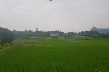 Bán 400m2 đất nằm trên trục đường chính đi vào khu nghỉ dưỡng Beverly Hill, tại Lương Sơn, Hòa Bình