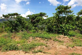 Bán đất khu dân cư đường 07/07 đường B'Lao Xê Rê, Đại Lào, Bảo Lộc, Lâm Đồng