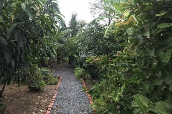 Bán khu nhà vườn Tây Quý Tây, Bình Chánh