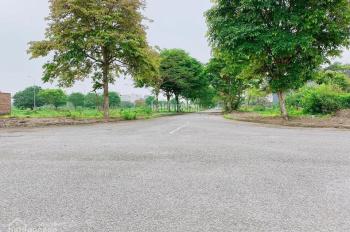 Hot! Cần bán 2 lô đất vị trí gần đường 25m, gần trung tâm quận Dương Kinh. LH: 0334 334 414