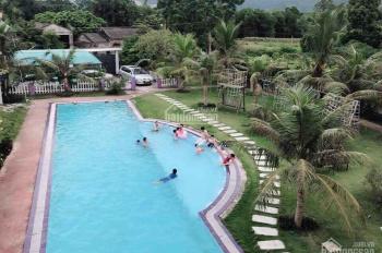 Bán biệt thự nghỉ dưỡng 1.331m2 tại Nhuận Trạch và các biệt thự nhà vườn khác giá rất hợp lý