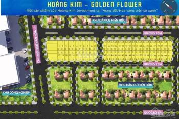 Bán đất nền dự án Hoàng Kim - Golden Flower