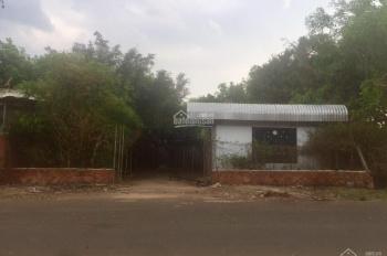 Vỡ nợ bán gấp miếng đất 1327m2 ở xã An Thái Phú Giáo Bình Dương