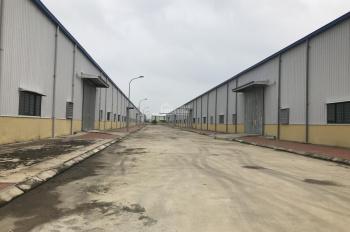 Cho thuê kho xưởng: 1000m2, 2000m2, 3000m2 tại Quất Động, Thường Tín, Hà Nội