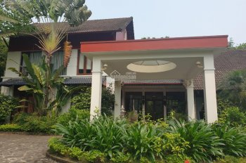 Bán gấp 1,6 ha nhà đất ở Lương Sơn Hòa Bình, có nhà, có hồ bơi, view đẹp