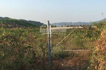 Bán trang trại xã Diên Đồng, 0812166279