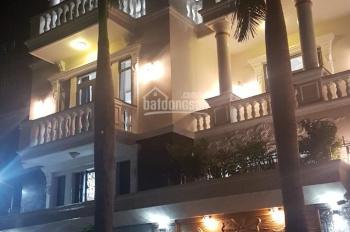 Bán biệt thự 10x20m lô góc khu dân cư Tân Phong, giá bán 12,xxx tỷ, LH 0794290131