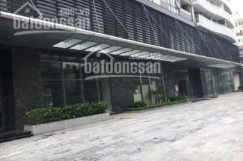 Cho thuê văn phòng khu Hoàng Quốc Việt diện tích 55m2, 70m2, 240m2 giá chỉ từ 210ngh/m2/th