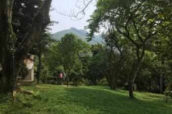 Siêu phẩm nghỉ dưỡng có tổng diện tích 6000m2 vị trí đắc địa giá siêu hấp dẫn tại Tiến Xuân, TT, HN