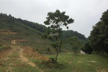 Cần bán gấp lô đất 2ha (20000m2) đất làm khu nghỉ dưỡng giá rẻ tại xã Yên Bình, Thạch Thất, Hà Nội