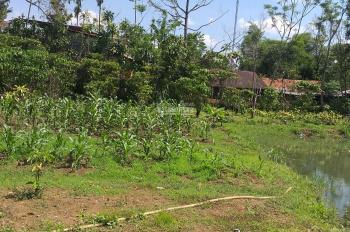 Bán đất nhà ở khu vực đông dân cư gần trung tâm TP Bảo Lộc