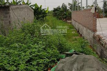 Bán 100m2 đất mặt đường An Kim Hải, Đồng Thái, An Dương. Giá 1 tỷ 500