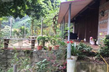Cần bán gấp khuôn viên biệt thự nhà vườn DT 2400m2 tại xã Tiến Xuân, Thạch Thất, Hà Nội