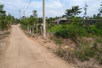 Kẹt tiền cần bán gấp miếng đất tại Ấp 8 - Xuân Tây - Cẩm Mỹ - Đồng Nai