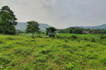 Cần bán 5400m2 đất tại Trang Viên Đồng Gội, Hòa Sơn, Lương Sơn view đẹp giá rẻ