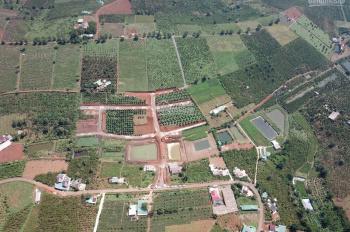 Đất nền Bảo Lộc đã có sổ đỏ cầm tay cần bán 40 nền để chạy việc nhà - có chính sách cho ai mua sỉ