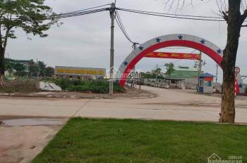 BĐS Tân Hưng Phát mở bán đất nền, phân lô cụm công nghiệp Dương Liễu, Hoài Đức, Hà Nội