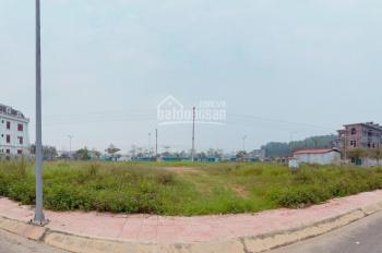 Bán 293m2 đất nền Nam Vĩnh Yên, mặt tiền rộng 15m giá cực thấp, đã có bìa đỏ - LH Giang 0336764825