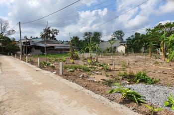 Bán nền TC 100% gần Hồng Loan GĐ2, cách khu Xẻo Nhum 400m, gần khu Nam Long 3 (khu 9A) giá 700tr