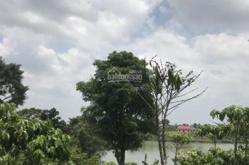 Bán 1 sào đất cafe giáp hồ Bảo Lâm (TP. Bảo Lộc)