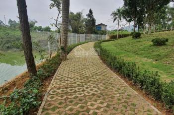 Bán lô đất 250m2 dự án Lucky Hill, Thạch Thất, Hòa Lạc giá rẻ