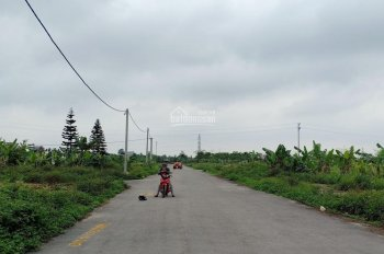 Bán đất phân lô chung cư Đồng Hải, xã An Hưng, An Dương, giá 6, 7, 8 triệu/m2. LH 0782 051 093