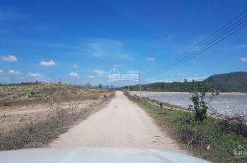 Cần bán 50ha đất nông nghiệp sổ đỏ vĩnh viễn tại huyện Đức Trọng - Lâm Đồng