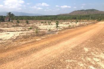 Bán lô đất nông nghiệp đẹp giá chỉ 303 triệu diện tích 4333m2 bao sang tên công chứng LH 0909998421