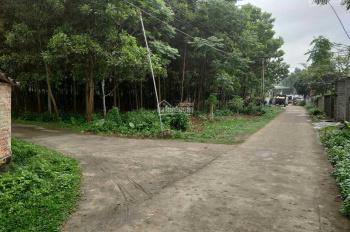 Bán mảnh đất diện tích 2.300m2 tại Lương Sơn Hòa Bình