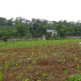 Cần bán gấp lô đất tuyệt đẹp tại khu sân golf thuộc xã Liên Sơn, Lương Sơn, Hòa Bình DT 2608m2