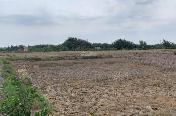Bán đất làm trang trại nhà vườn khu nghỉ dưỡng mini chỉ cách SG 15km, 0963637836