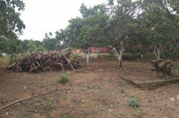 Bán đất Phú Cát, view hồ, diện tích 700m2, giá chỉ 2,8 triệu/m2. LH 0961266229