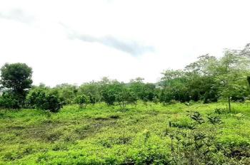 Bán 9000 m2 đất tại Hợp Hòa, Lương Sơn, Hoà Bình, 4,3 tỷ
